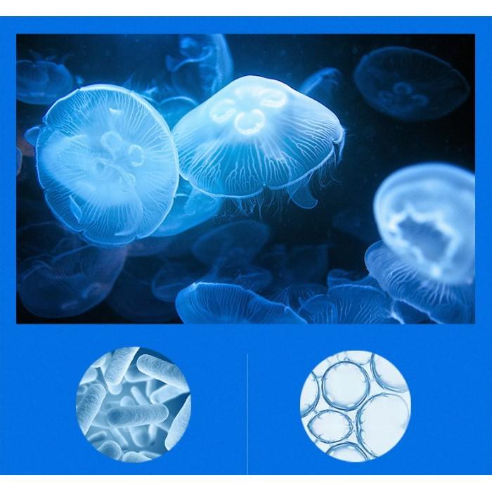 Liftheng патчи для век гидрогелевые с экстрактом медузы 60 шт
